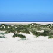 Dünen vor dem Riffgat