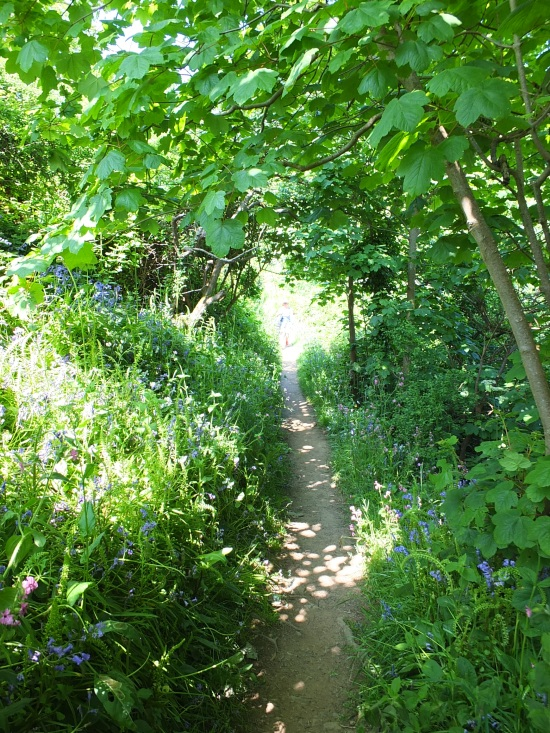 2. Der Waldpfad zum Dorf hinauf