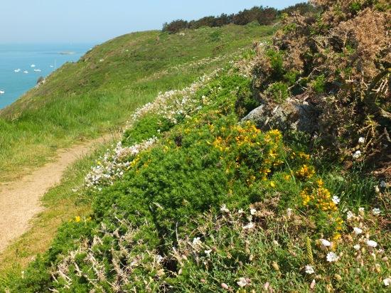 8. Wandern auf dem Klippenpfad