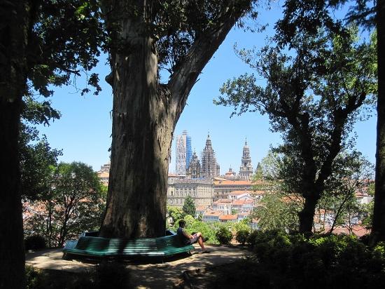 Blick vom Park aus auf die Kathedrale