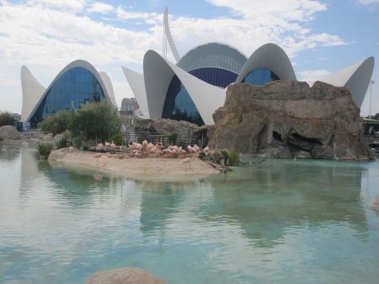 Im größten Aquarium von Europa