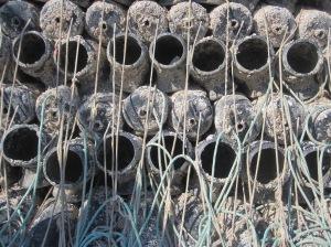 Ködergefäße für Tintenfische