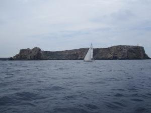 IMG_1043BKaum Welle, aber guter Wind